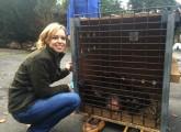 Rettung eines Schimpansen