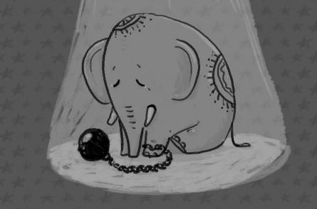 entwurf elefant zeichnung1