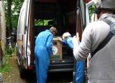 Laura Zodrow bringt einen geretteten Affen in eine Auffangstation