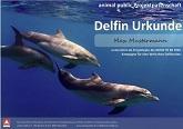 delfin-urkunde-fuer-internet