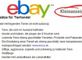 ebay-internet