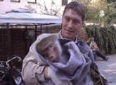 Wormser Paviane finden in Holland ein neues Zuhause