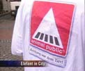 animal public