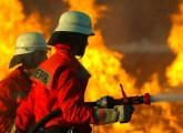Technischer Defekt verursachte Brand im Karlsruher Zoo