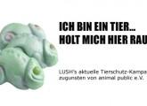 LUSH unterstützt animal public