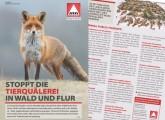 Jagdgesetznovelle: Die Chance nutzen