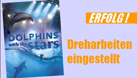 dolphin with stars-erfolg