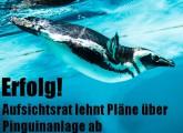 Protestaktion: Keine Pinguine im Spaßbad