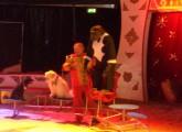Hoffnung für Deutschlands letzten Zirkus-Schimpansen