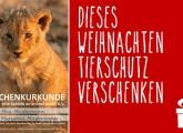 Weihnachten: Tierschutz verschenken