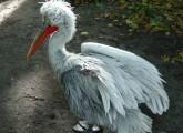 Erfolg: Erstes Bundesland geht gegen Verstümmelung von Vögeln vor
