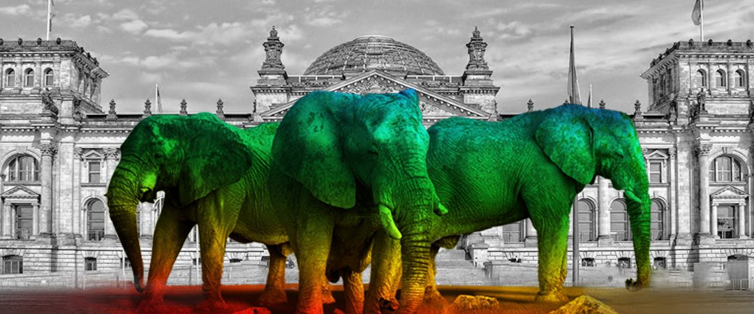 Bundestag berät zu Wildtierhaltung im Zirkus