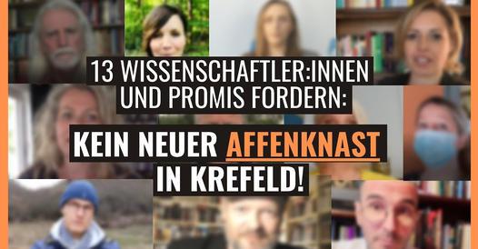 Wissenschaftler und Promis fordern: Kein neuer Affenknast in Krefeld